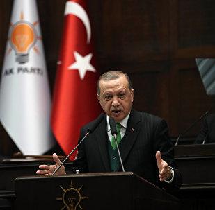 土耳其总统谴责美以破坏叙利亚局势