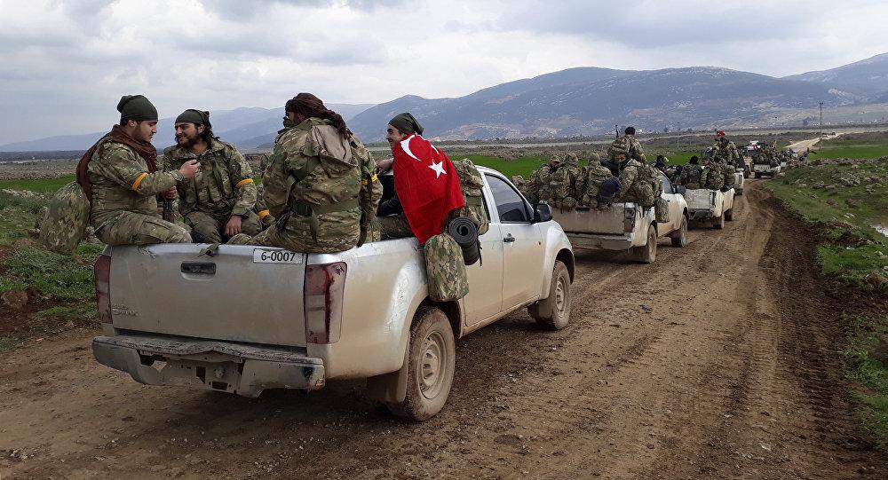 拉夫罗夫:美国仍在推进控制叙土边境的路线