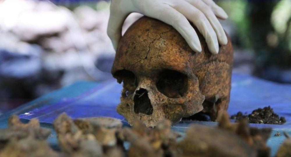 美國或將允許用人類骸骨施肥