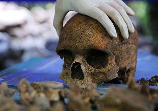 美国或将允许用人类骸骨施肥