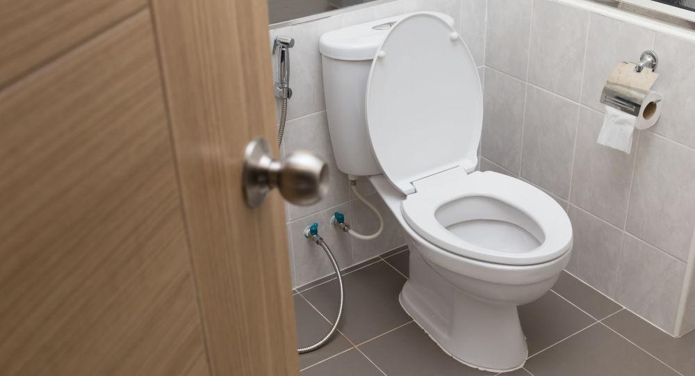 日本拟在2020年前将蹲式厕所换成欧式坐便器