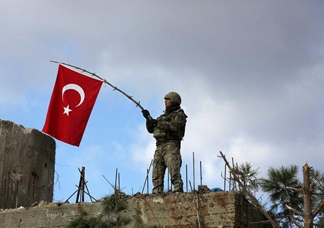 过去24小时内在叙阿夫林歼灭70名武装分子