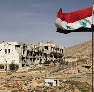 俄駐敘部隊具備遏制當地恐怖主義活動的實力