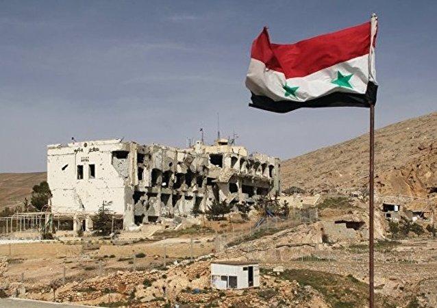 叙利亚将继续在东古塔区实施反恐行动