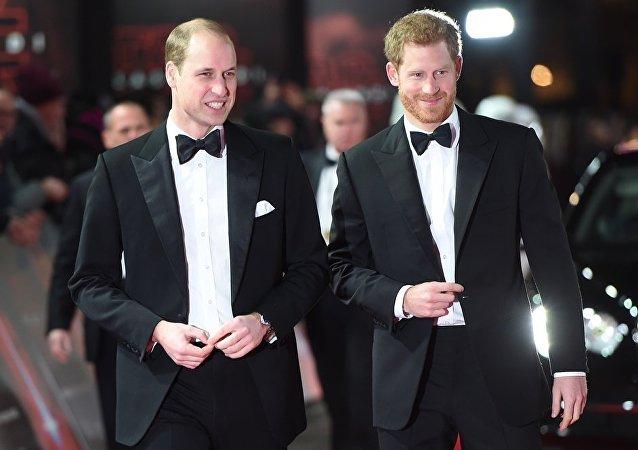 英國威廉和哈里王子受歡迎度超過女王