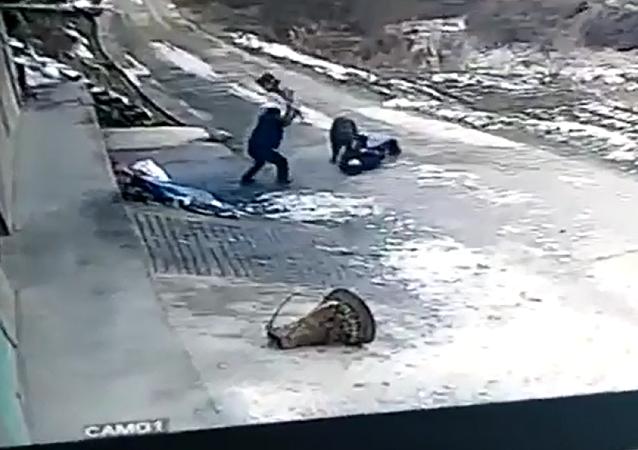 中国网站上出现一名退休工人被野猪袭击的视频