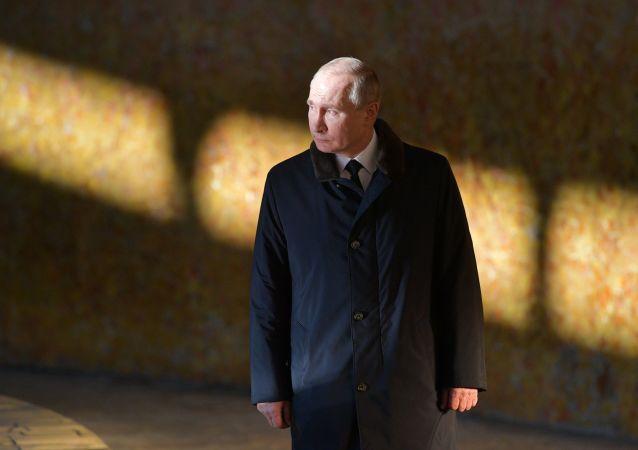 俄罗斯中央选举委员会公布普京6年来的收入