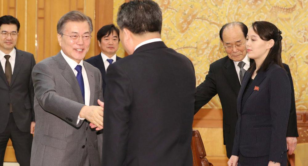 代表团与韩国总统文在寅进行了会谈