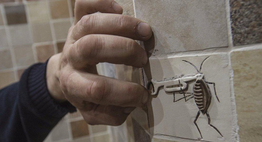 盗走500只活蟑螂的小偷面临五年监禁