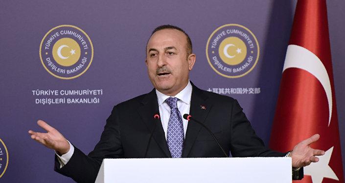 土耳其外長:不認為敘利亞軍進入阿夫林有任何問題