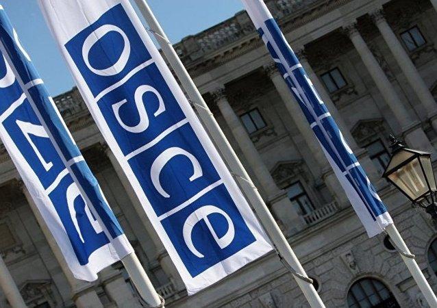 需要歐安組織的權威來放行俄觀察員參加烏選舉