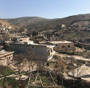 土耳其称有关叙亲政府武装进入阿夫林的报道是黑色宣传