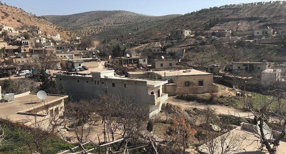 土耳其稱有關敘親政府武裝進入阿夫林的報道是黑色宣傳