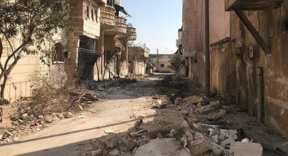 土外长:土军在叙阿夫林的行动将在5月前结束