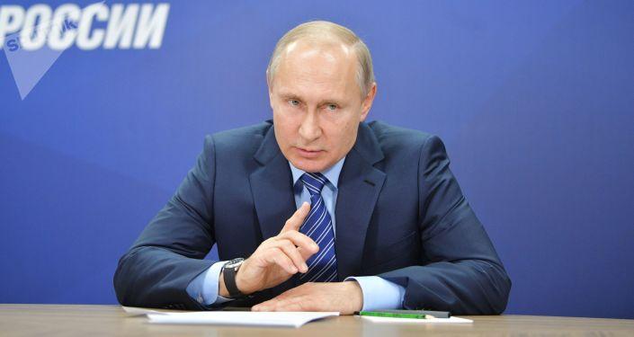 普京:任何包括选前阶段在内的活动都应该在法律框架内进行
