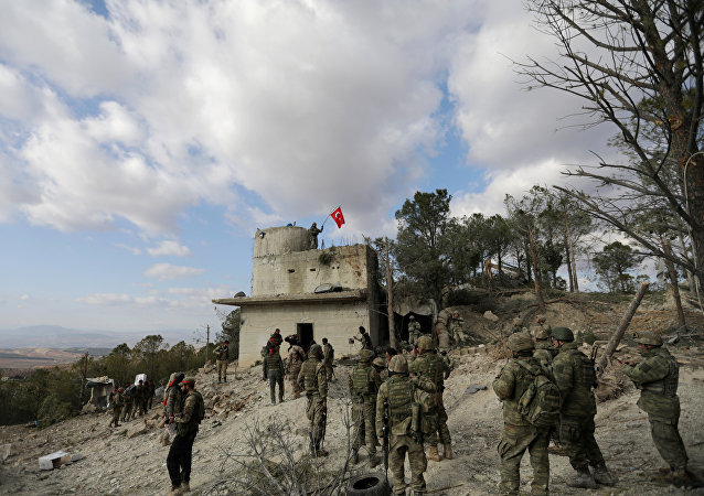 """土耳其在阿夫林的行动限制美国打击""""伊斯兰国""""行动"""