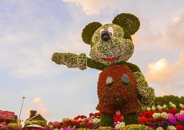 鮮花版世界最高米老鼠現身迪拜用