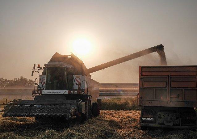 中俄粮食走廊项目落户营口 期待更多俄罗斯企业入驻
