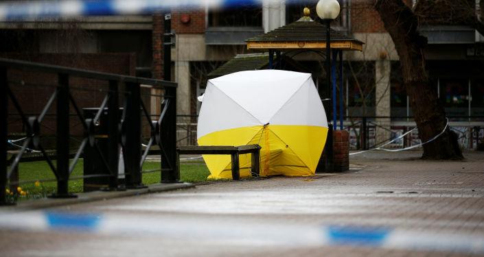 特朗普表示将根据事实对斯克里帕尔中毒案作出结论