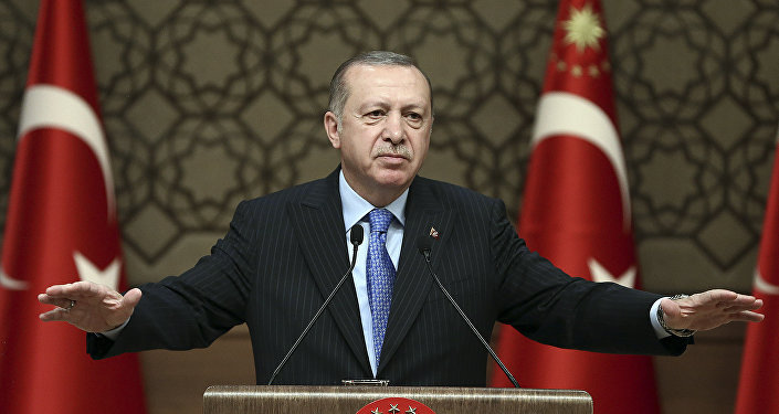 土耳其总统大选提前 埃尔多安宣布启动连任竞选活动