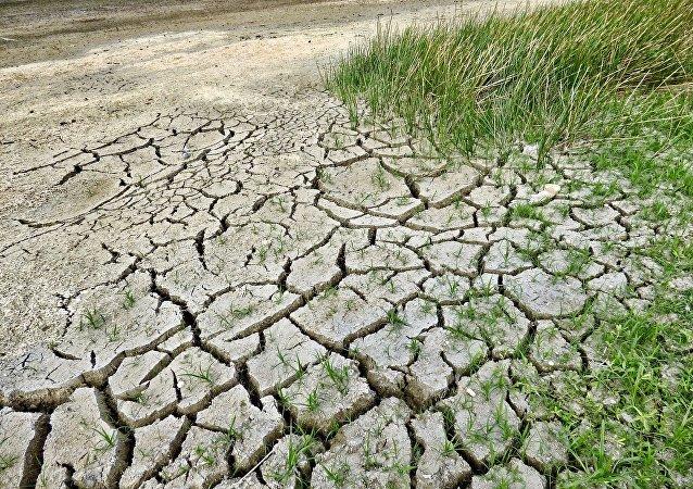 科学家预测美国2020年将频繁出现极端炎热天气