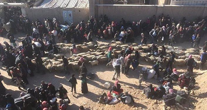 叙东古塔65%地区已被解放