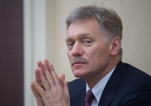 俄总统新闻秘书:若普京修宪 改革也不涉及总统职权