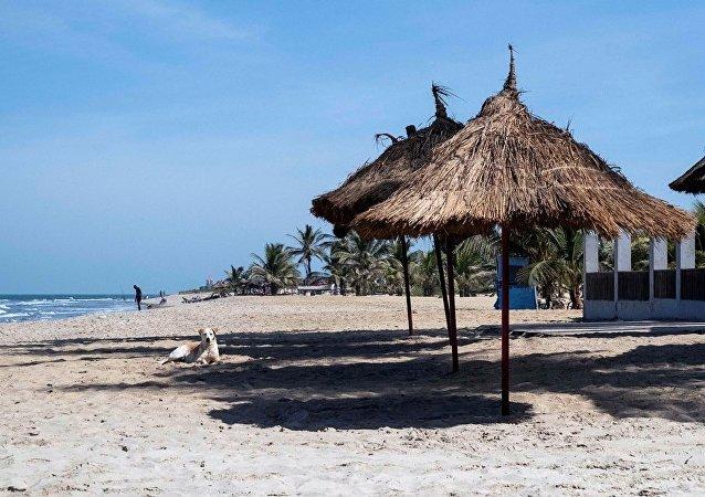 民调:非洲2018年有望迎来中国旅游客流增长