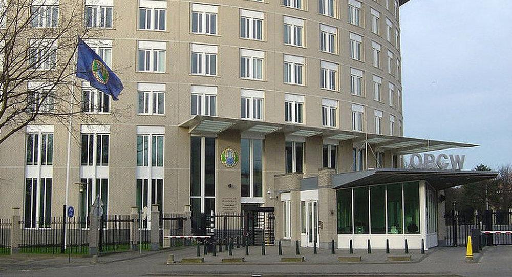 俄中提议的草案有助于维护禁化武组织的完整