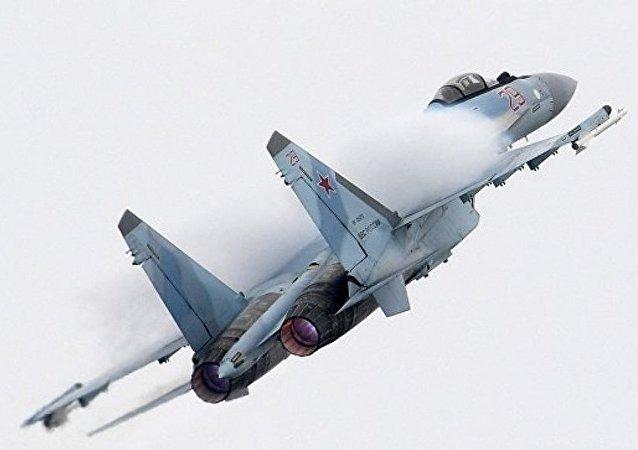 俄国防部:一周内共20架飞行器在俄边界附近侦察