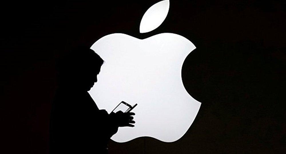 苹果拟将iPhone变成电子护照