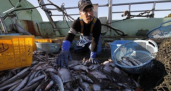 專家:福島水產對俄居民安全