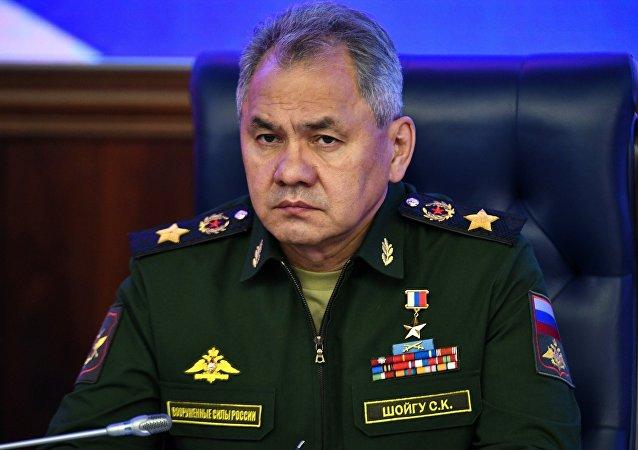 俄防长:2018年国家国防采购将达约15万亿卢布