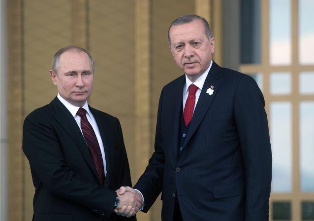 俄土总统下令启动阿库尤核电站建设