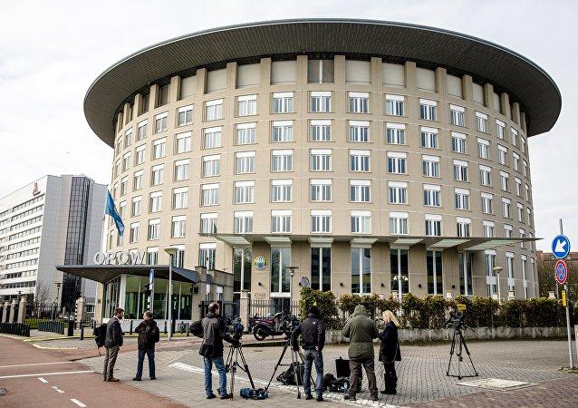 俄中提议成立工作小组复查有关禁化武组织扩权问题