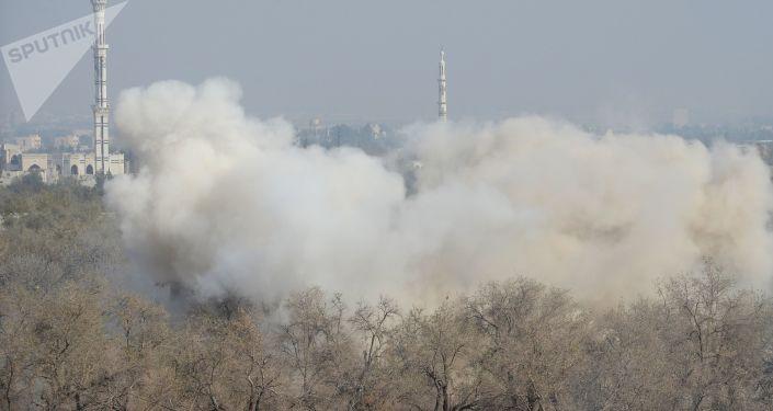 消息人士:若禁化武組織前往調查杜馬鎮化武襲擊 敘方將提供必要協助