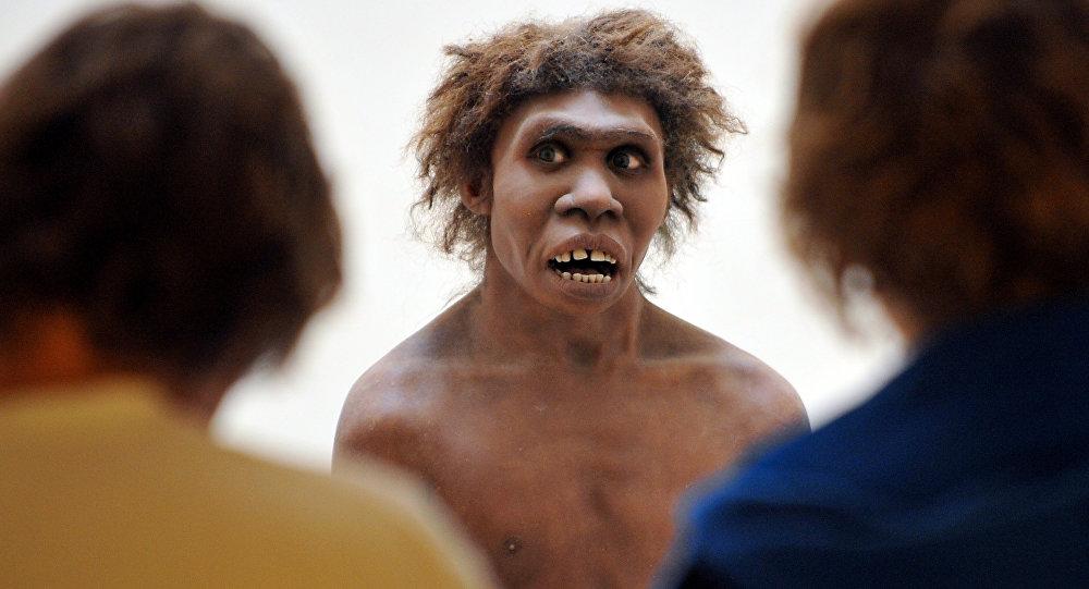 科学家弄清了眉毛在人类进化中所起到的作用