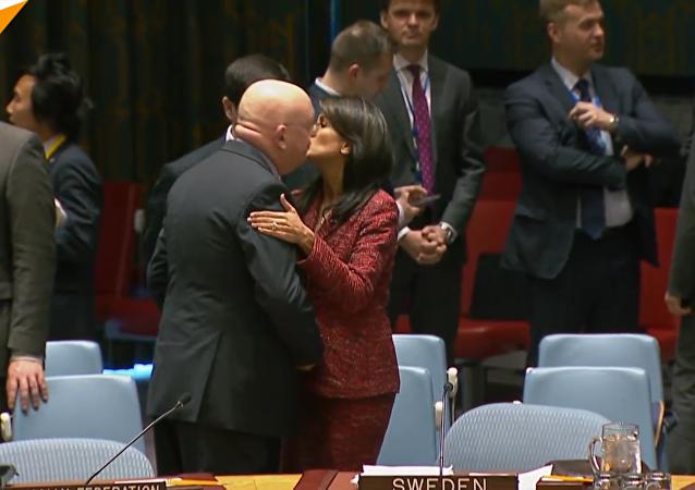 俄美常駐聯合國代表會前友好擁抱