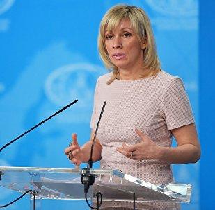 俄外交部:希望攻击过叙利亚的法国不要干涉禁化武组织的工作