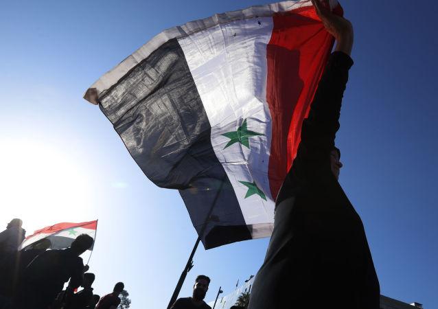 法国外长:阿萨德赢得战争 但未赢得和平