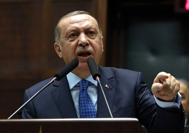 土总统埃尔多安表示,美英法对叙利亚的打击有根据,因为不能让化学武器攻击逍遥法外