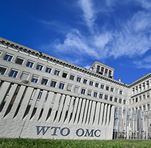 習近平:中方贊成對世界貿易組織進行必要改革