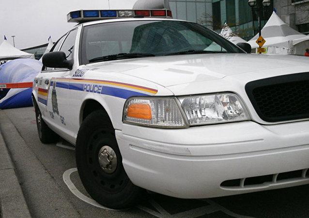 兩名法國遊客在魁北克大橋上自拍被加拿大警方拘留