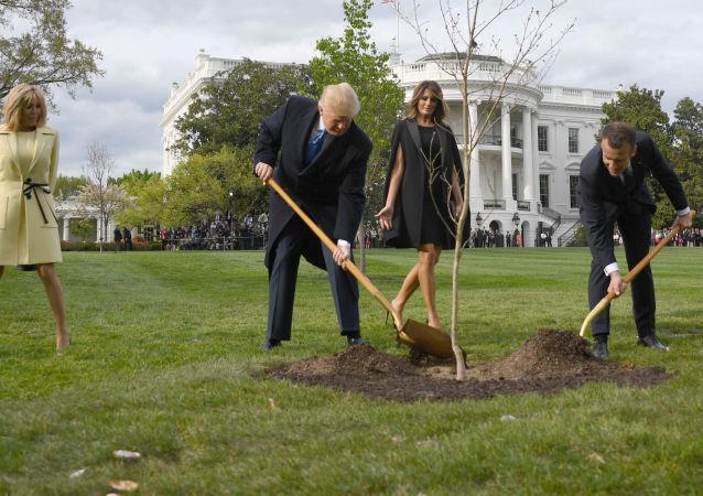 马克龙与特朗普在白宫花园共同种下橡树苗