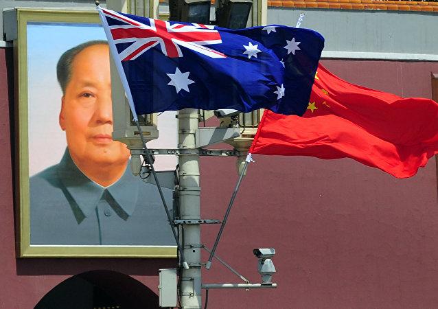专家:中国针对澳大利亚反华攻势正制定反制措施