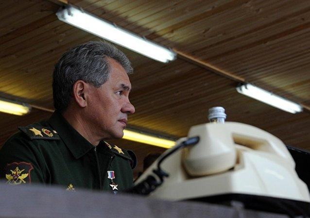 俄法防长讨论地区和全球安全问题