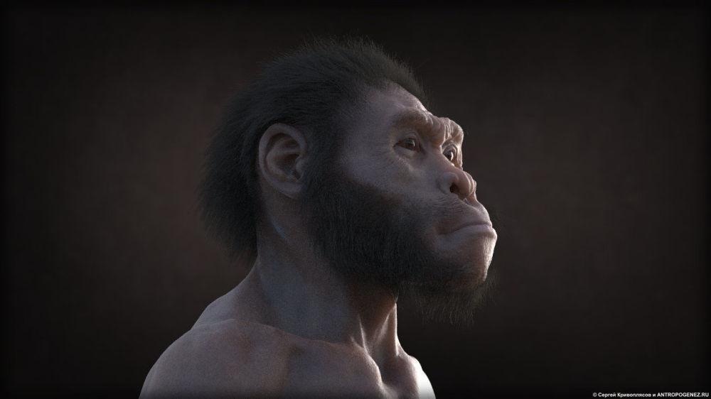 据人类学家估算,成年男性纳莱迪人身高150厘米,体重约45公斤,在各方面都不如同时期生活的人类。 图片说明:动画片《纳莱迪人:两个世界的相遇》中的镜头(作者-谢尔盖·克里沃普里亚索夫)。