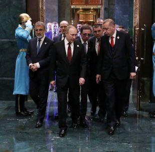 俄罗斯卫星通讯社2018年4月最佳摄影