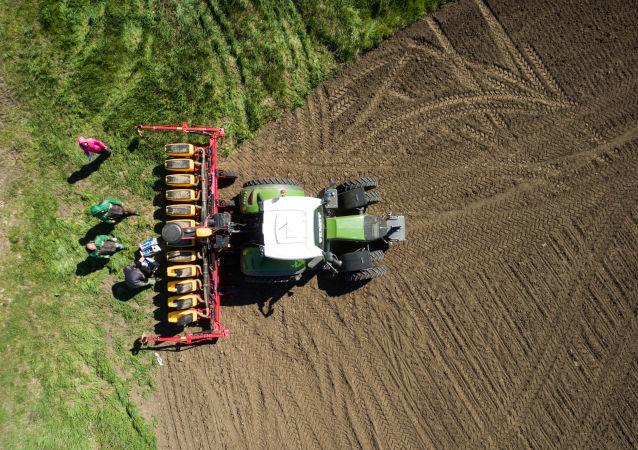 俄科學家研制出利用硅納米粒子加快穀物生長和增產的方法