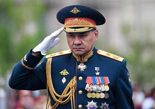 俄羅斯防長紹伊古